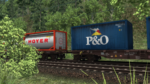 3D ZUG Sgjkkmms Container Wagon