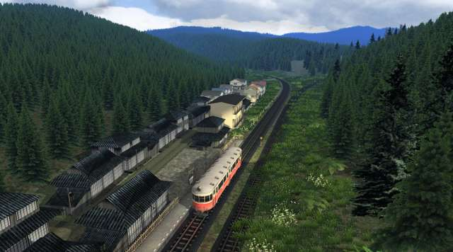 The Story of Forest Rail